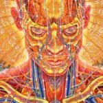 Energy work and Energy Healing:  A bit of clarification